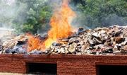 Photo: Destroy of Wildlife Stockpiles