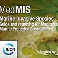 Medmis banner Photo: IUCN-Med
