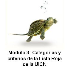 Online IUCN Red List training course now available in Spanish and French.