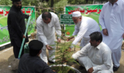 Working together to reach and surpass their goals. Photo: Billion Tree Tsunami Afforestation Project website