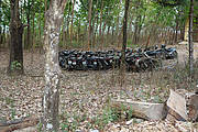 100 motorbikes confiscated at Chu Mom Ray National Park Photo: Lois Lippold