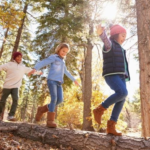 Children playing on a log. Photo: Shutterstock