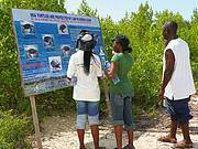 Education and sensitization are the prime tools in order to help to save the sea turtles Photo: Edward Aruna