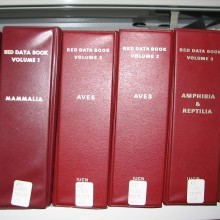 Red Data books in their original binders Photo: Craig Hilton-Taylor