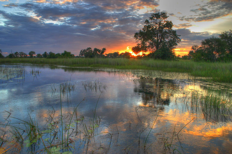 Okavango Delta Sunset ©Jens Kipping