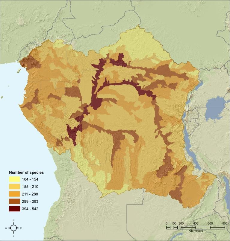 Central Africa freshwater species richness