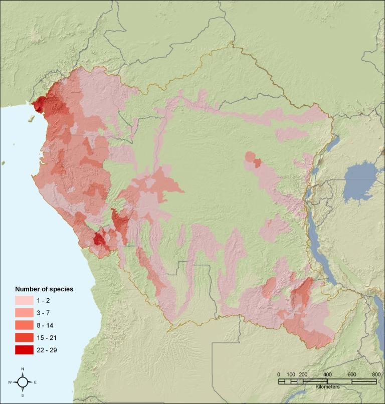 Threatened freshwater species richness in Central Africa
