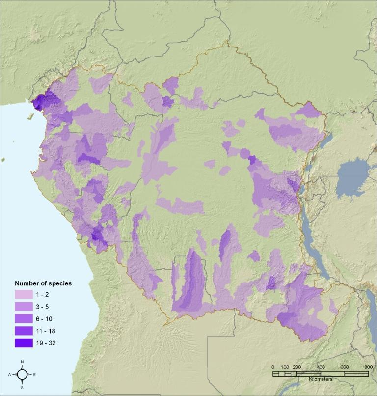 Restrcited range freshwater species in central Africa