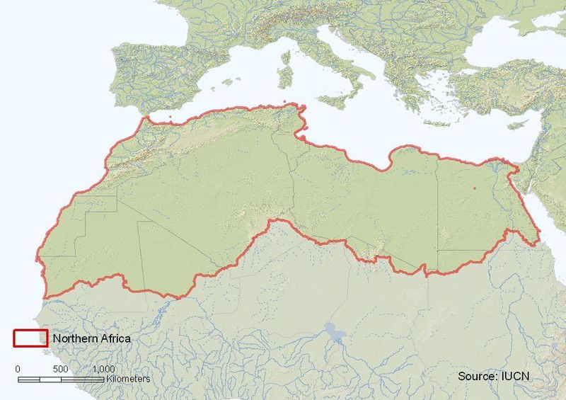 Northern Africa assessment region