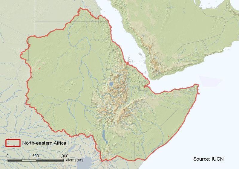 Northeastern Africa assessment region