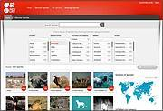 "A preview of the new ""Discover Species"" search tool. Photo: The IUCN Red List"