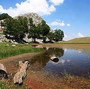 Shebenik-Jabllanicë National Park, Albania. Photo: IUCN/T.Pezold