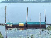 Fish cages Ise Nigeria Photo: Tomas Diagne