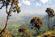 Simien National Park, Ethiopia. Photo: IUCN Photo Library / Peter Howard