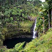 Kulaniapia falls, on the Big Island (Hawaii). Photo: Sebastià Semene Guitart