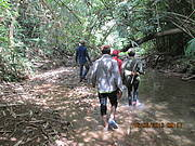Reconnaissance patrol route along a stream. Photo: Khamhou Thongsamouth