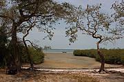 Quiet but easy to access islands. Photo: Rowan Martin
