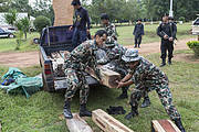 Thap Lan rangers unload Siam rosewood confiscated from poachers. Photo: Ann & Steve Toon
