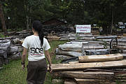 Evidence store of Siam rosewood confiscated from poachers. Photo: Ann & Steve Toon