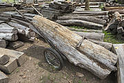 Improvised cart used by poachers to remove Siam rosewood. Photo: Ann & Steve Toon
