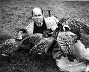 Sir Peter Scott with Nenes. Photo: WWT