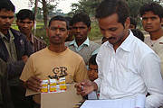 Distribution of subsidized meloxicam encourages switching to safer alternative. Photo: Satya Prakash