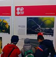 Science Festival Photo: IUCN/A.Nikodinovic
