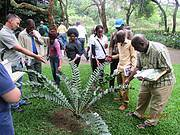 200 law enforcement officials are trained learning how to identify endangered cycads Photo: EWT