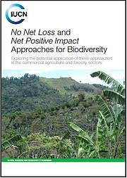 Report examines No Net Loss and Net Positive Impact approaches in commercial agriculture and forestry. Photo: IUCN