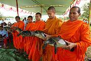 Monks holding Southern River Terrapins during traditional ceremony Photo: Allan Michaud / WCS