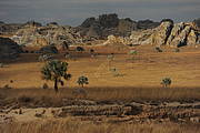 Isalo landscape, one of Madagascar's many landscapes. Photo: Russ Mittermeier