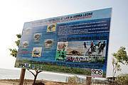 One of the numerous sea turtle information billboards produced and deployed to local beaches. Photo: Edward Aruna