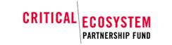 Critical_eco