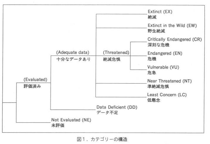 個体群の傾向・サイズ・構造および分布範囲に関連した基準に基づいた8つのIUCNレッドリストカテゴリーがあります