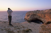 Monitoring Northern Bald Ibis on Moroccan coasts © Louis Marie Préau