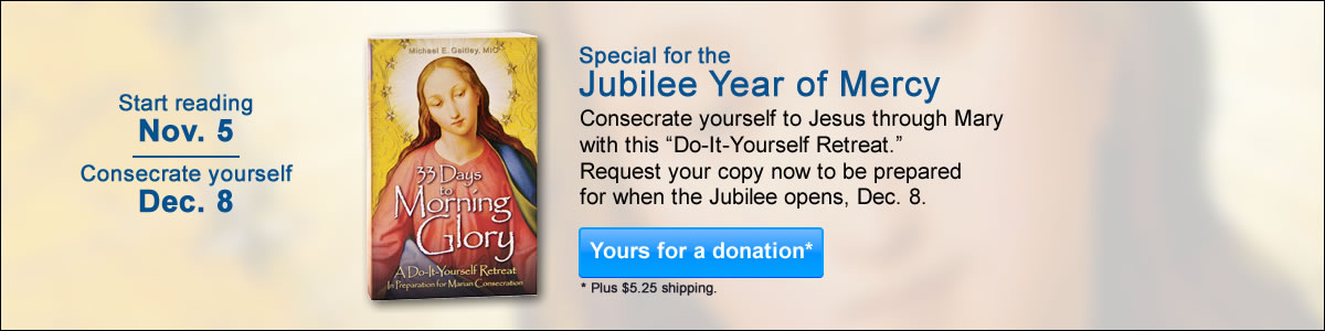 33Days book_for jubilee_102015A