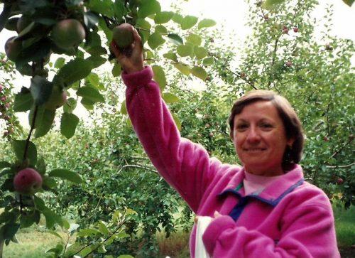 Octobre 1990... aux pommes