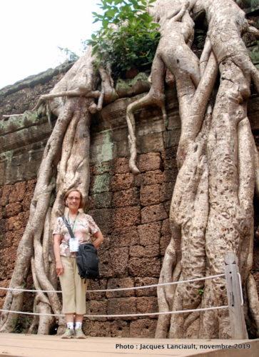 Novembre, Angkor, Cambodge