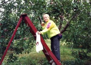 Aux pommes en octobre 1990!