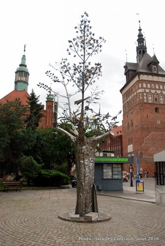 Arbre du Millénaire, Gdańsk, Pologne
