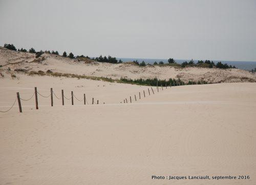 Dunes mouvantes du parc national de Słowiński, Pologne