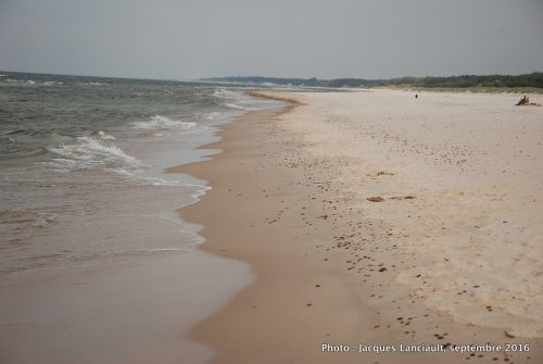 Plage sur la mer Baltique, parc national de Słowiński, Pologne