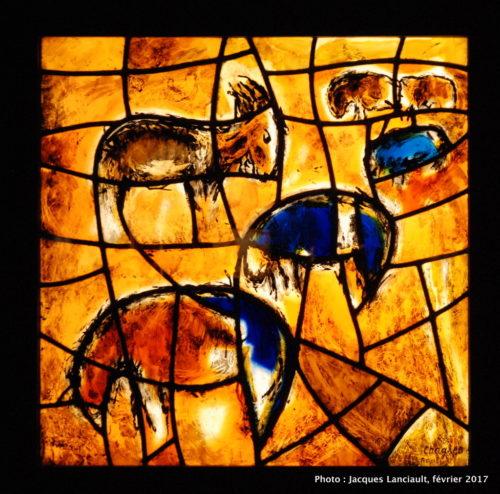 Vitraux du centre médical Hadassah, Jérusalem, Marc Chagall, MBAM