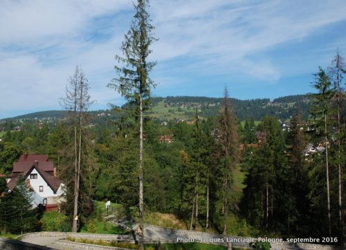 Vue sur la nature entourant le parc du sanctuaire Notre-Dame-de-Fatima, Zakopane, Pologne