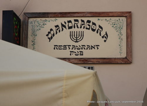 Mandragora Restauracja Żydowska, Lublin, Pologne
