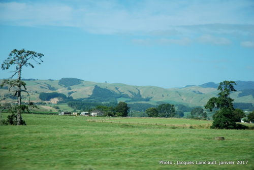 Paysages, île du Nord, Nouvelle-Zélande