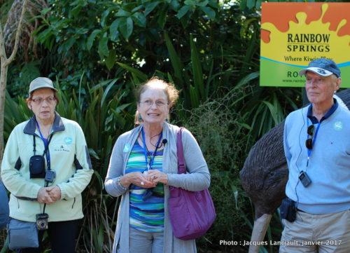 Parc naturel kiwi de Rainbow Springs, Rotorua, île du Nord, Nouvelle-Zélande