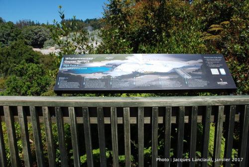 Te Puia, Rotorua, île du Nord, Nouvelle-Zélande
