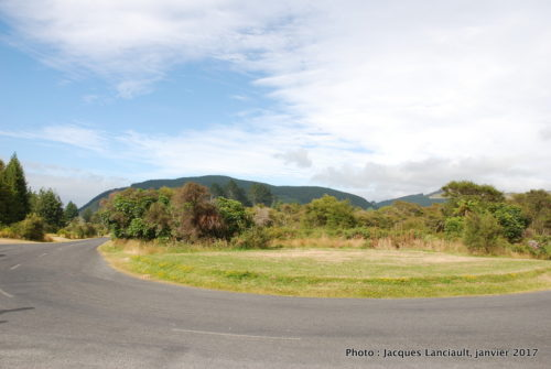 Rotorua, île du Nord, Nouvelle-Zélande