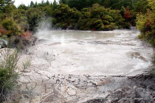Étang de boue bouillante, Rotorua, île du Nord, Nouvelle-Zélande